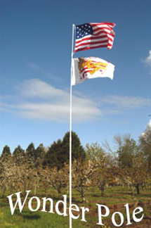 Tailgating_flagpole
