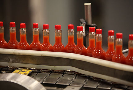 Tabasco Bottling Line