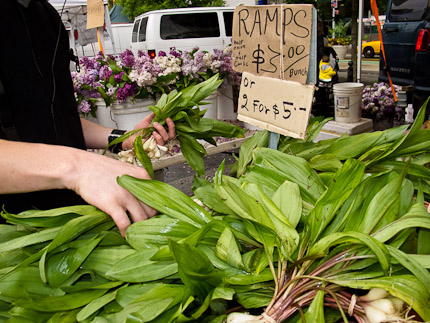 Schrambling_110518_ramps at union square greenmarketIMG_2099