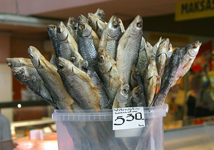 dried fish in riga's central market