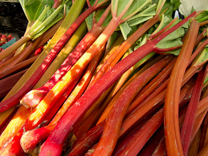 Schrambling_rhubarb and strawberries-0335
