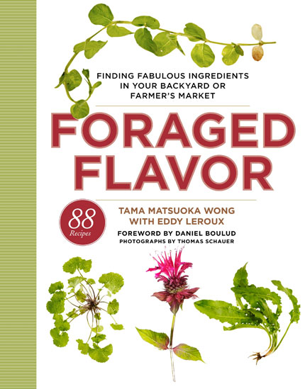 Foraged-flavor-cookbook