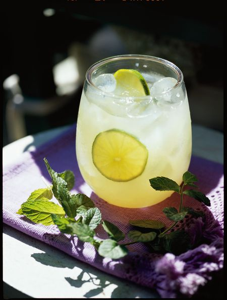 Nojito-cocktail-recipe-epicurious
