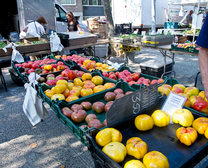 Schrambling_97th street greenmarket ray bradley concord grapes tomatoes -5733