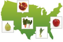 Farmtotable-seasonal-ingredient-map