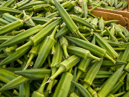 Schrambling_okra 97th street greenmarket-3183