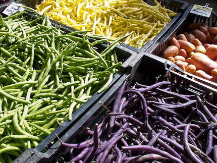 Schrambling_purple green beans 97th street greenmarket-3822
