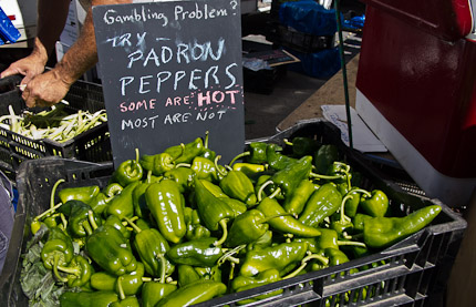 Schrambling_padron peppers union square greenmarket-3785-2