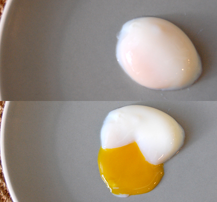 Nomiku-egg-test