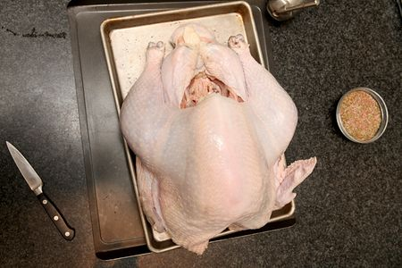 Raw-turkey