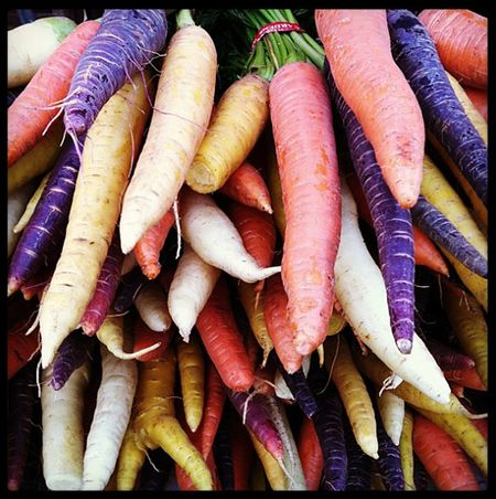 Carrots-instagram