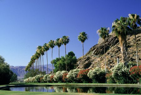 Most-Famous-Places-In-California-Palm-Springs