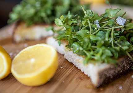 Chickweed Bruschetta2-jpeg