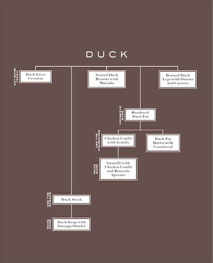 Duck page[1]